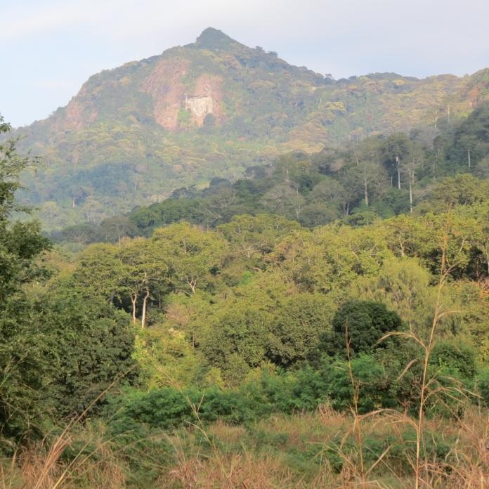 Udzungwa_peak